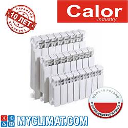 Биметаллические радиаторы Calor FB-500/100 Perfect