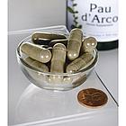 Swanson Pau D 'Arco  кора муравьиного дерева  500 мг 100 капс, фото 2