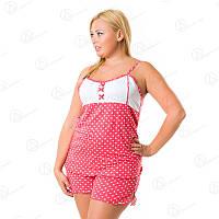 Комплект двойка Vetex Carolina майка + шорты батал Турция  KRLN9026 интернет-магазин нижнего белья больших размеров