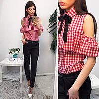 Костюмчик: блуза и брюки