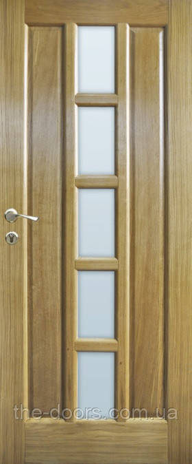 Двери Термопласт мод. 10 стекло шпон натуральный