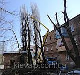 Кронирование спиливание деревьев, обрезка веток сада, фото 5