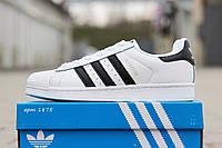 Женские кроссовки Adidas Superstar, белые с черными полосками