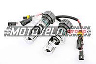 Лампы биксеноновые (пара) H4 (12V 35W DC AMP) 6000K HNG