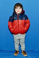 """Детская демисезонная куртка на синтепоне """"DUO"""" с капюшоном (2 цвета)"""