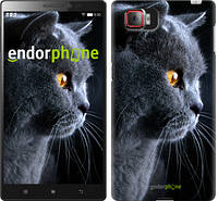 """Чехол на Lenovo Vibe Z2 Pro k920 Красивый кот """"3038c-284"""""""