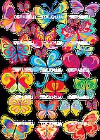 Бабочки 002