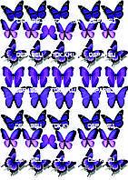 Бабочки 005