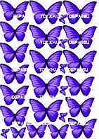 Бабочки 007