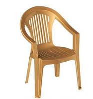 Кресло Irak Plastik Bahar EKO тик пластиковое
