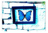 Светящиеся картина Startonight Абстракция Бабочки Печать на Холсте Декор стен Дизайн дома Интерьер