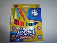 Фломастеры 12 цветов ASTRA