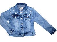 Джинсовая куртка для девочек, размеры 134-164 Seagull арт. CSQ-89821