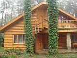 Блок-хаус от производителя наружный сорт1 , фото 8