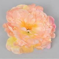 Головка Пиона 15-17 см дымчато-розовая