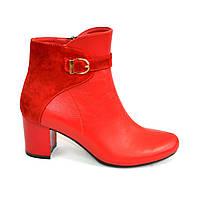 Красные женские демисезонные ботинки на невысоком каблуке. Натуральный замш и кожа.