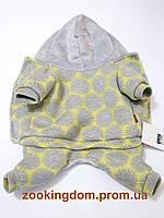 Костюм для собаки Шарон XS, Длина спины 23-26 см, обхват груди 28-32 см (цвета разные)