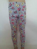 Лосины трикотажные с бабочками для девочки р.104/110-128/134 Emma girl