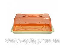 Тортовница прямоугольная цветная, 19x39x15 см ТМ Bager