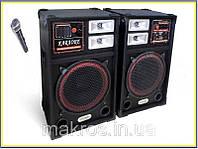 Акустика для караоке USB-FM 112 на 200ват+микрофон