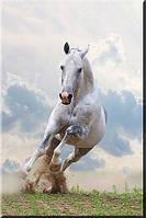 Светящиеся картины Startonight Белая Лошадь Печать на Холсте Животные Декор стен Дизайн дома Интерьер