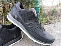 Мужская спортивная обувь TIMBERLAND