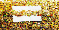 Тесьма золото с пайеткой, ширина 2см(20м в упаковке)