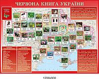 """Информационный стенд """"Красная книга Украины"""""""