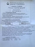 Камера Горяева (гемоцитометр) 4-х секционная с 2 покровными стёклами в комплекте, фото 3