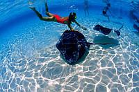 Подводный парк MARINARIUM