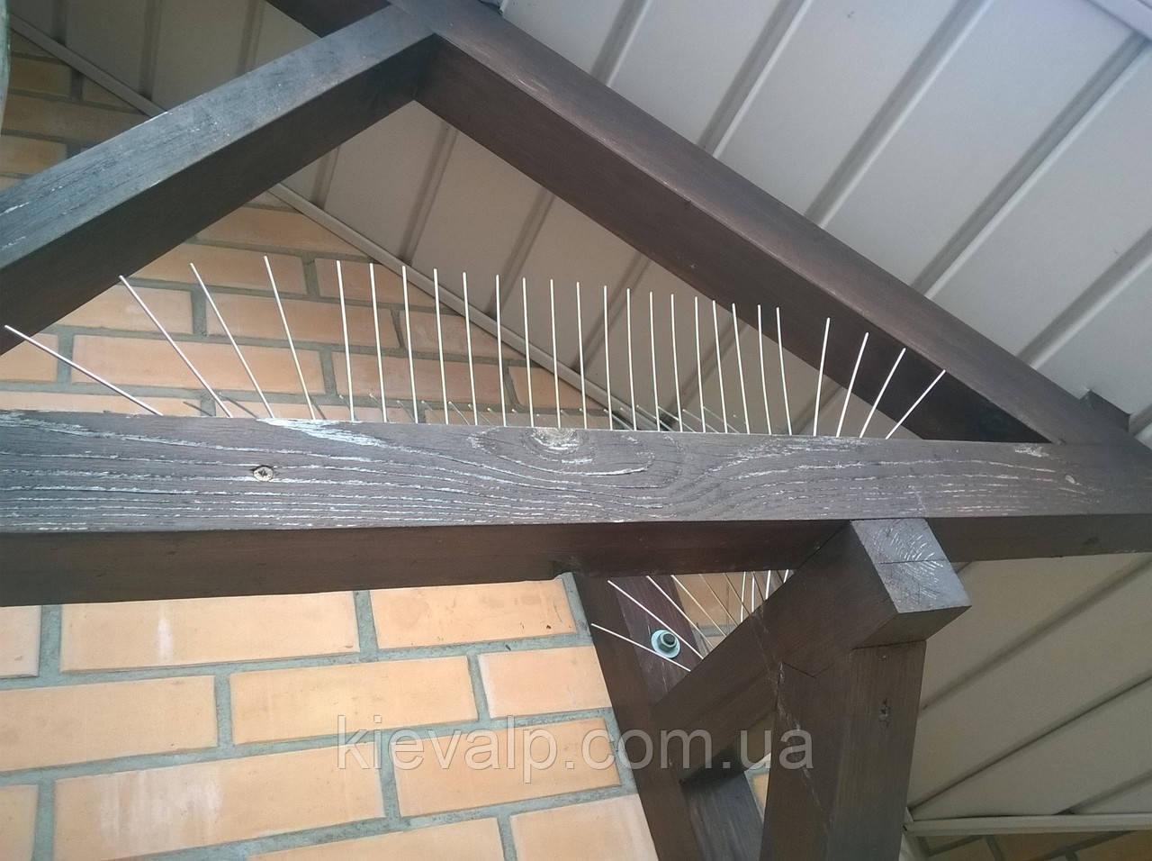 Защита от птиц. Как отпугнуть голубей от балкона. Противоприсадные шипы. Шипы от птиц.