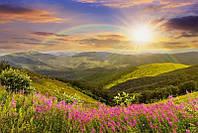 Светящиеся картины Startonight Горная Поляна Природа Пейзаж Печать на Холсте Декор стен Дизайн дома Интерьер
