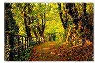Светящиеся картины Startonight Лесная Тропа Природа Пейзаж Печать на Холсте Декор стен Дизайн дома Интерьер
