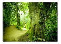 Светящиеся картины Startonight Зеленый Лес Природа Пейзаж Печать на Холсте Декор стен Дизайн дома Интерьер