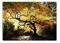 Светящиеся картины Startonight Клен Дерево Природа Пейзаж Печать на Холсте Декор стен Дизайн дома Интерьер
