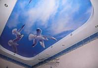 Арт-дизайн натяжных потолков в Николаеве