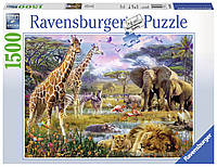 "Пазл ""Разноцветная Африка"" 1500 элементов, Ravensburger"