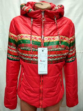 Куртка весна-осень гуччи ,(модель 225), фото 2