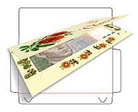Конверт-открытка 162X78