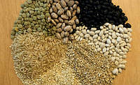 Прогнозами розвитку зернового ринку України на 2014р