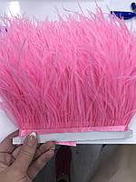 Перьевая тесьма из перьев страуса .Цвет розовый.Цена за 0,5м