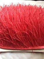 Перьевая тесьма из перьев страуса .Цвет красный.Цена за 0,5м