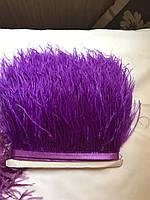 Перьевая тесьма из перьев страуса .Цвет темно фиолетовый.Цена за 0,5м