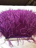 Перьевая тесьма из перьев страуса .Цвет светло фиолетовый.Цена за 0,5м