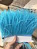 Перьевая тесьма из перьев страуса .Цвет темно бирюзовый.Цена за 0,5м