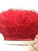 Перьевая тесьма из перьев страуса .Цвет светло красный.Цена за 0,5м