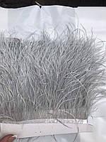 Перьевая тесьма из перьев страуса .Цвет пепельный,светло серый.Цена за 0,5м