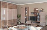 """Модульная система для гостиной """"Барбара"""", фото 5"""