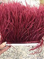 Перьевая тесьма из перьев страуса .Цвет бордовый,темно красный.Цена за 0,5м