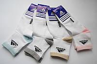 Женские спортивные носки Adidas